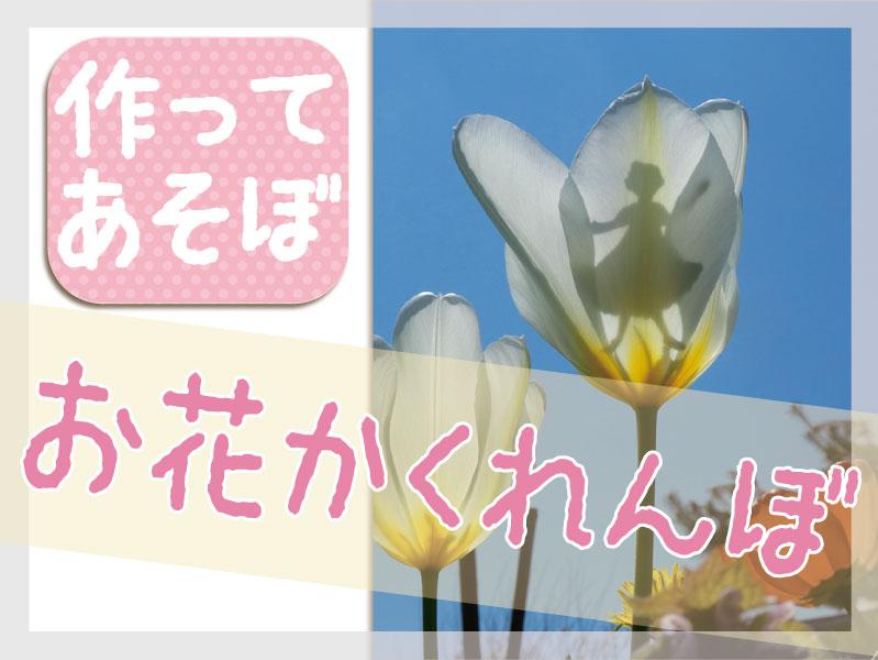 お花かくれんぼ top
